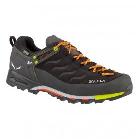 Buty męskie Salewa Mountain Trainer GTX
